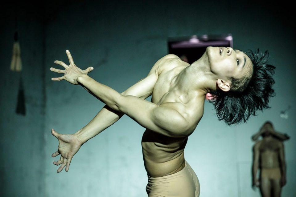 «Тела рисуют, мускулы кричат»