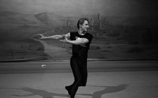 David Hallberg – Monologue about the life without ballet