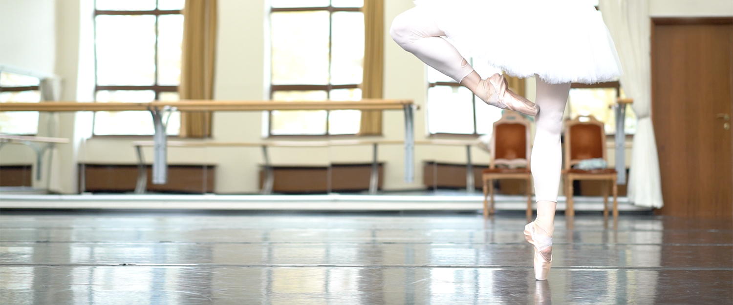 A film about staging of Don Quixote, a ballet by Rudolf Nureyev